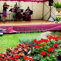 2014 08 22 Nova Vita Sommerfest Muzet Royal-