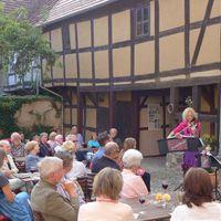2015 07 11 Konzert Wusterhausen mit Grillnebel-