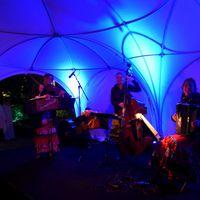 2015 06 18 BAP Sommerfest Nacht-