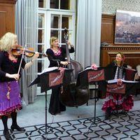 2015 02 25 Muzet Royal Rathaus SchA neberg JFK Saal2-