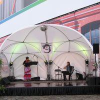2010 08 03 Gauklerfest