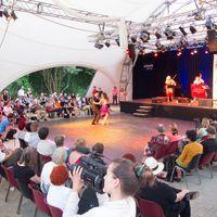 2013 07 20 Tangonale hell mit Publikum und Tanzpaar pink seitlich 210322 IMG 5954-