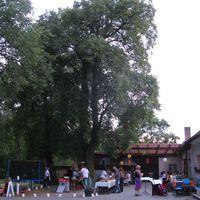 09-08-28 Ponyhof Wriezen Muzet Royal