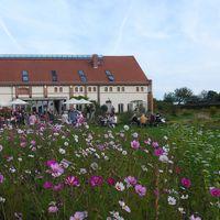 2017 09 29 Landhaus Ribbeck außen mit Blumenmeer3